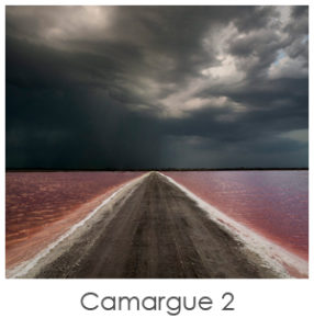 Photo de paysage de camargue