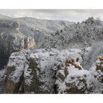 Vautours dans les gorges du Tarn en hiver
