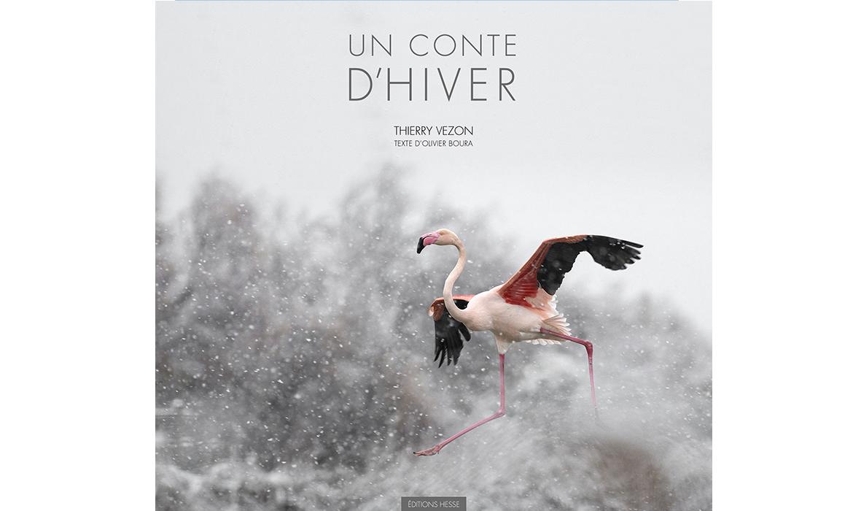 Couverture du livre un conte d'hiver de Thierry Vezon